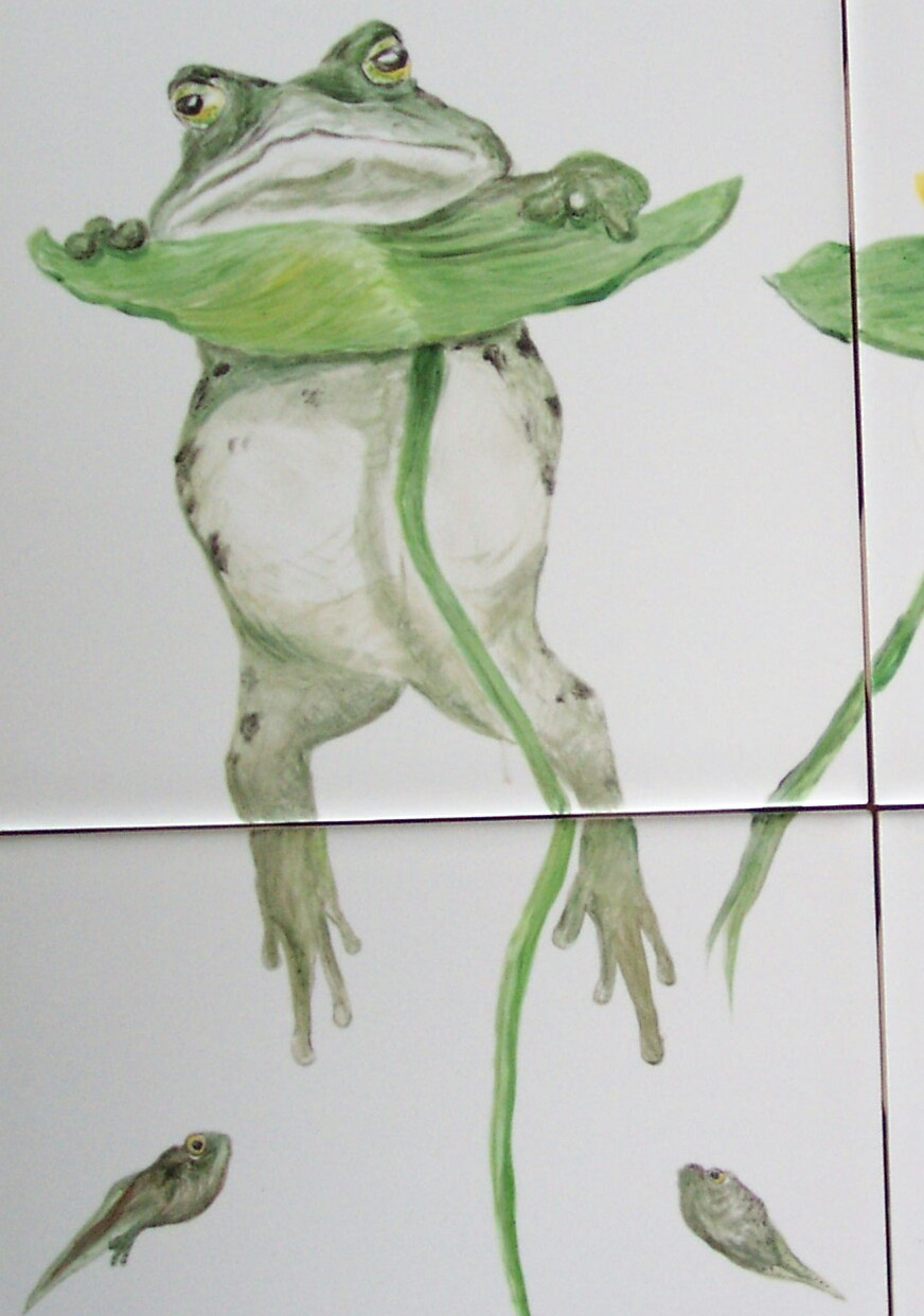 Frog for Bus Card